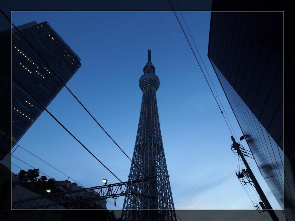 f:id:korokoro-nekochan:20161122172722j:image