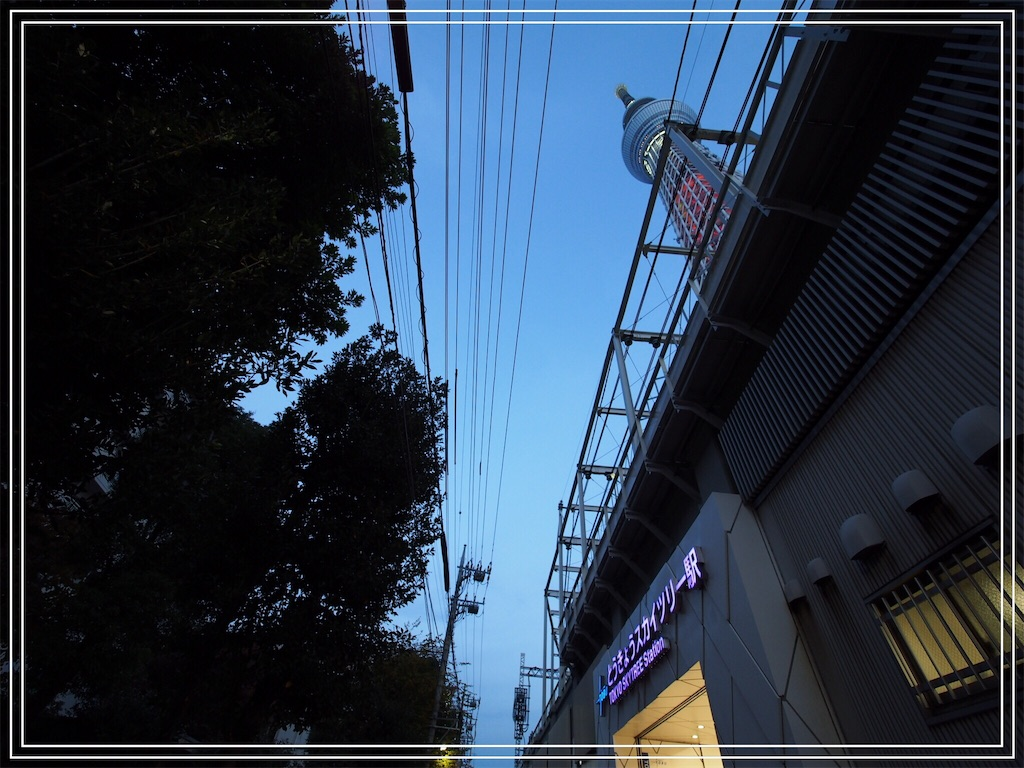 f:id:korokoro-nekochan:20161122172847j:image
