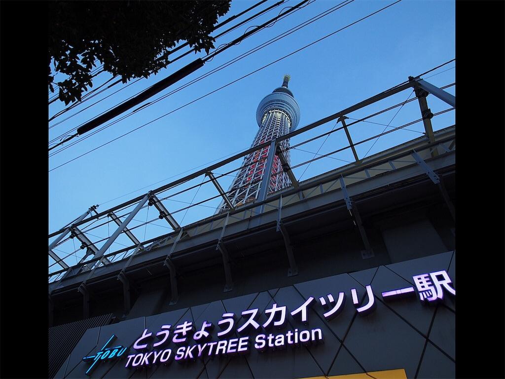 f:id:korokoro-nekochan:20161122172923j:image