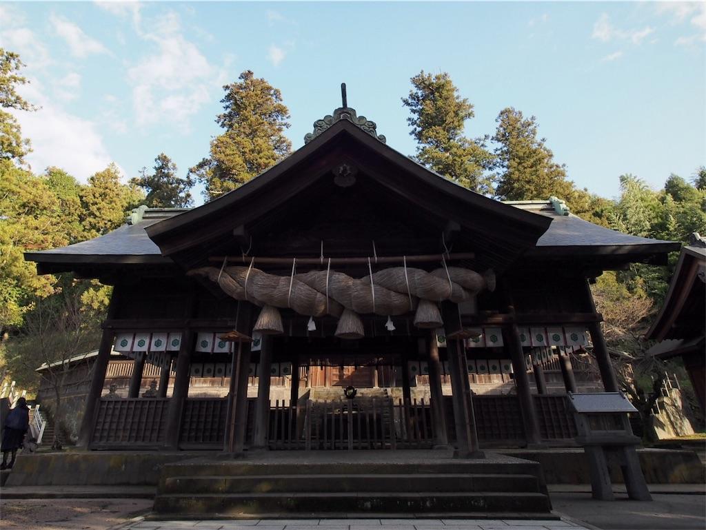 f:id:korokoro-nekochan:20170205130827j:image