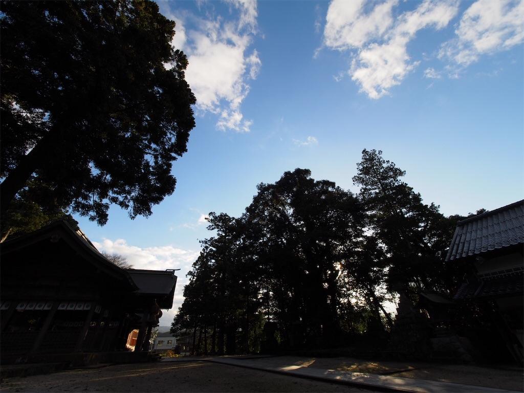 f:id:korokoro-nekochan:20170205131233j:image