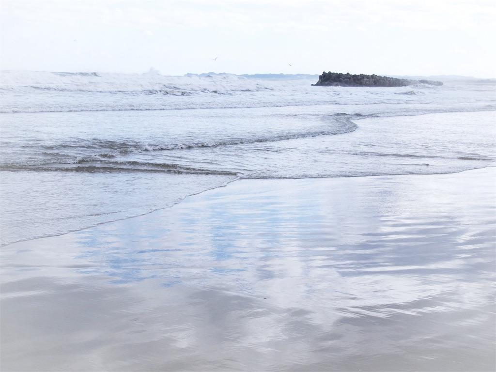 f:id:korokoro-nekochan:20180506220926j:image