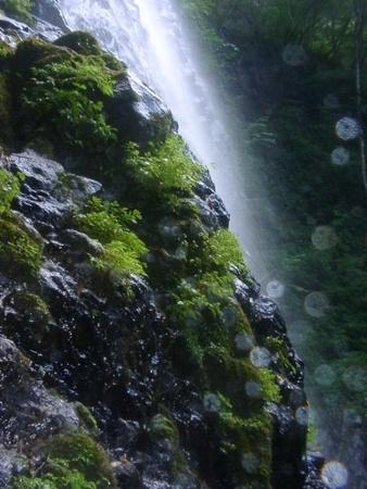 f:id:koromama:20070831151013j:image