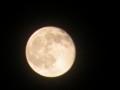 [月]たちまちの月