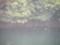 雨の石手川ダム