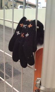 手袋は右手と左手どちらが多く落ちているか