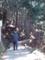 白猪の滝・登る