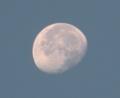 [月]朝の月