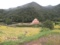 (No63)小豆島の光