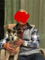 [うちの犬]パパに抱かれて