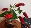 [花]ストロベリーキャンドルと
