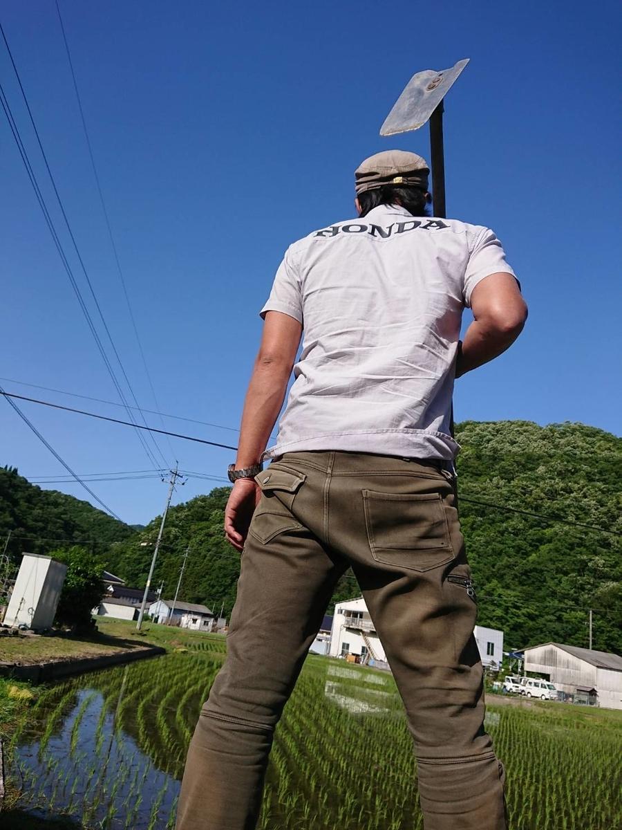 f:id:kosakou:20190529181625j:plain