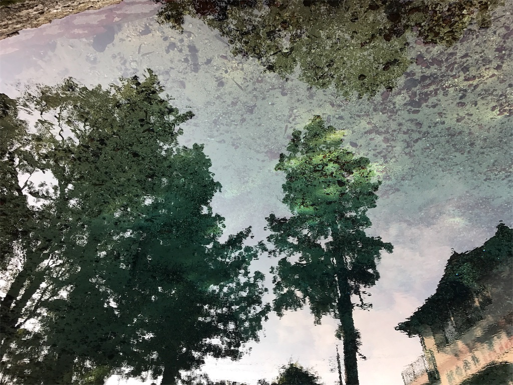 f:id:kosaku-tabi:20161104223700j:image