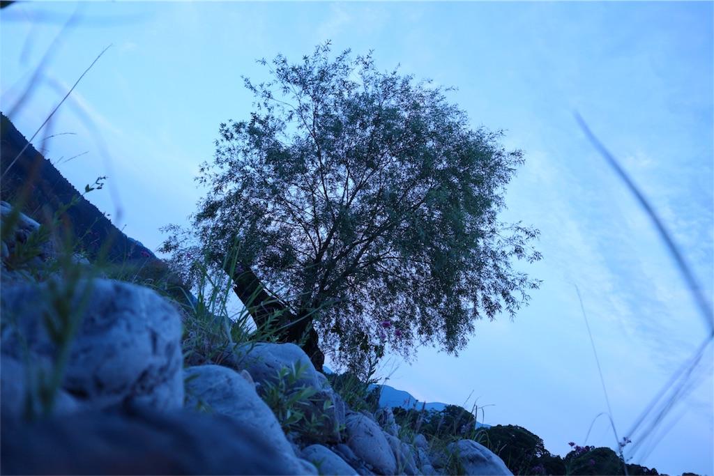 f:id:kosaku-tabi:20170521220542j:image