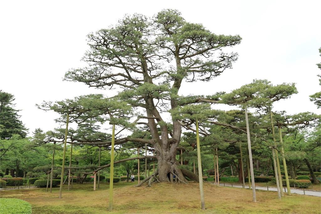 f:id:kosaku-tabi:20170529084549j:image