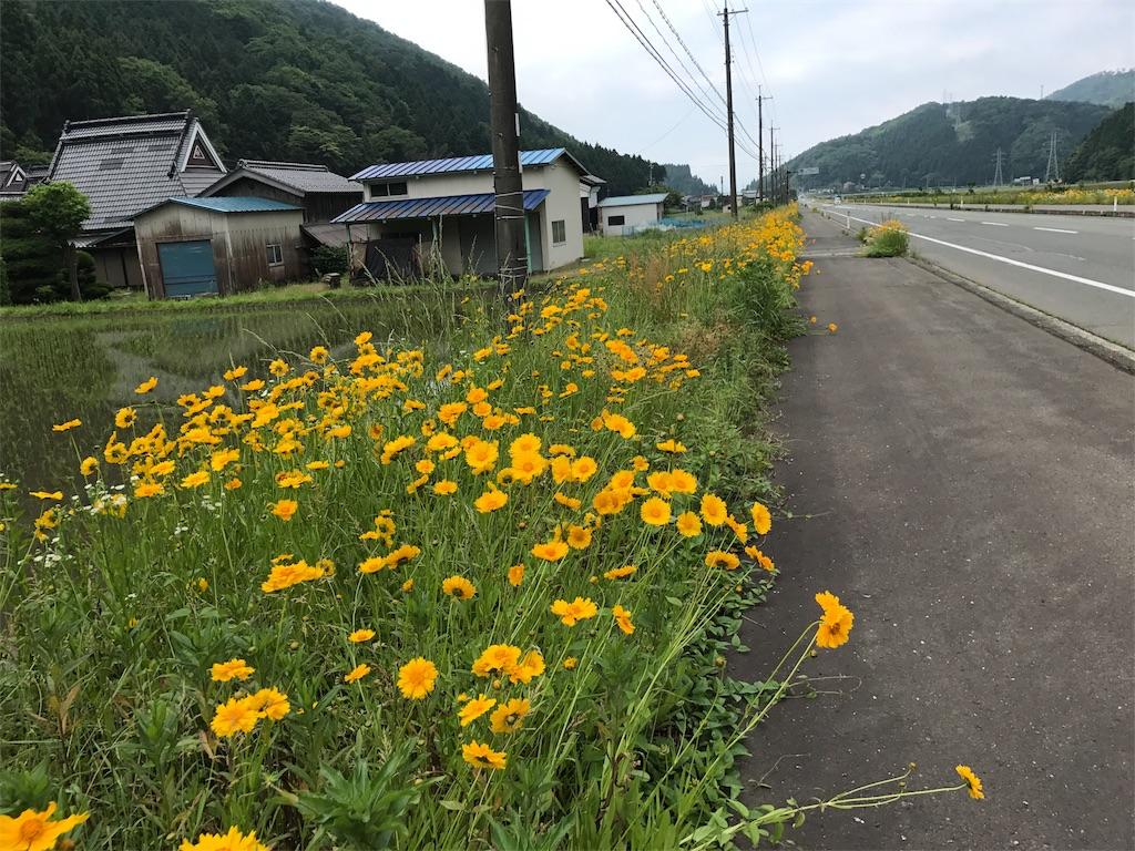 f:id:kosaku-tabi:20170602182229j:image