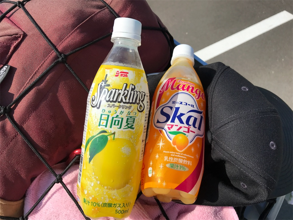 f:id:kosaku-tabi:20170717081829j:image
