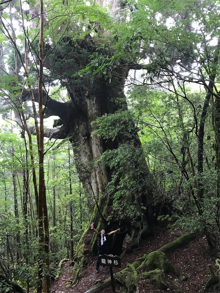 f:id:kosaku-tabi:20170730122836j:image