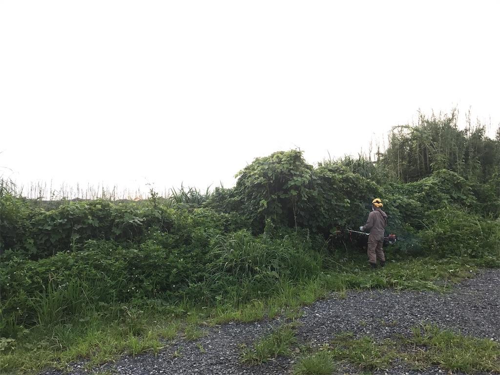 f:id:kosaku-tabi:20170804162220j:image