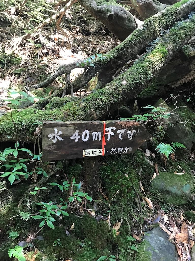 f:id:kosaku-tabi:20170917102819j:image