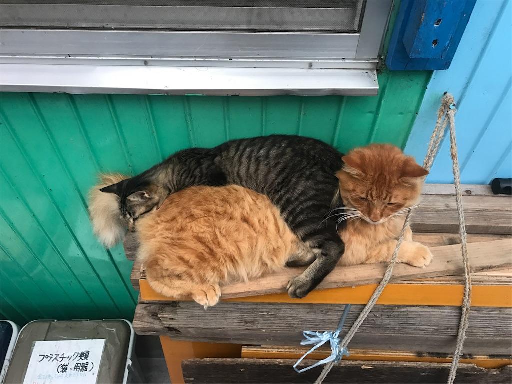 f:id:kosaku-tabi:20171022233654j:image