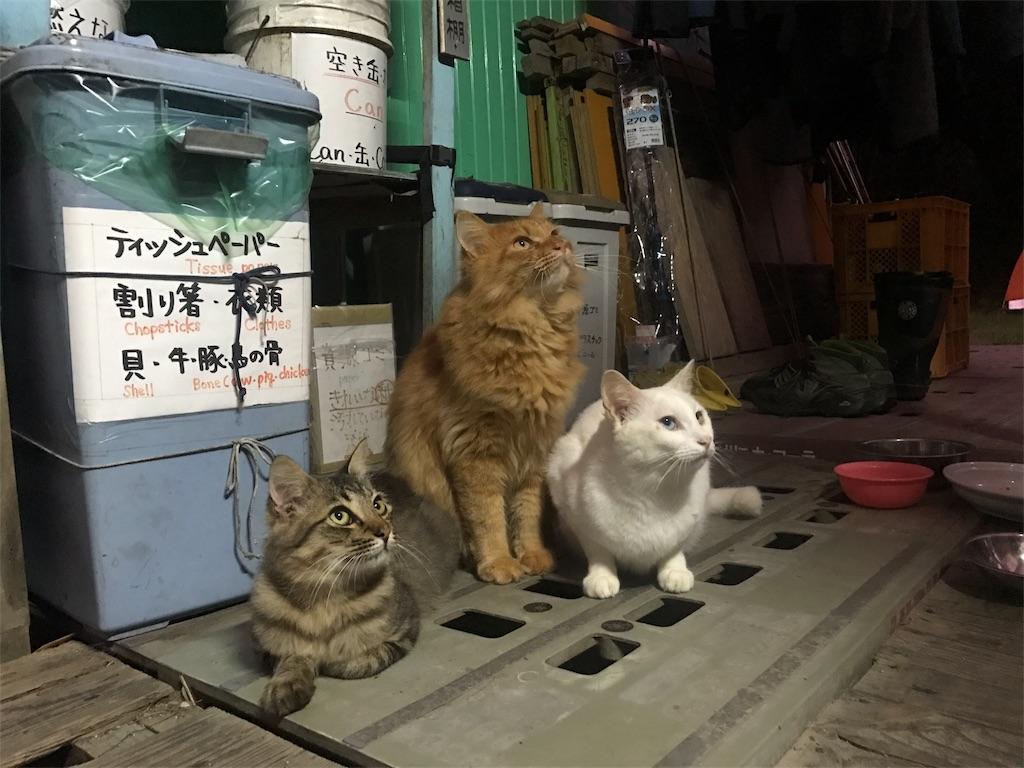 f:id:kosaku-tabi:20171022234541j:image