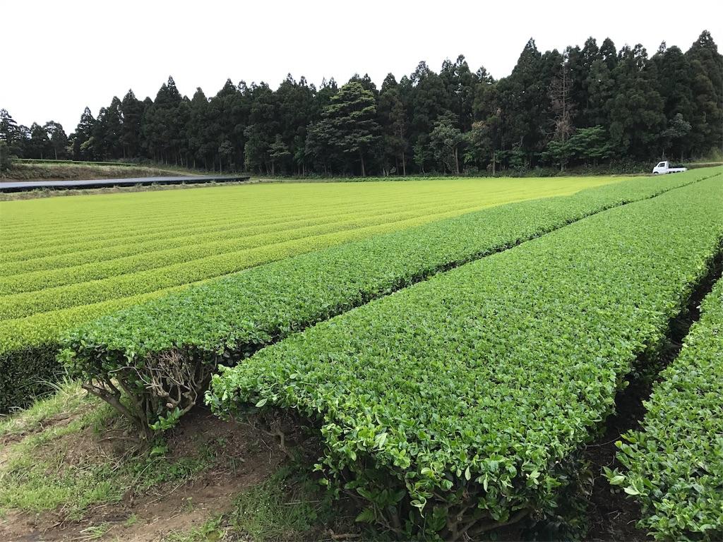 f:id:kosaku-tabi:20180414142517j:image