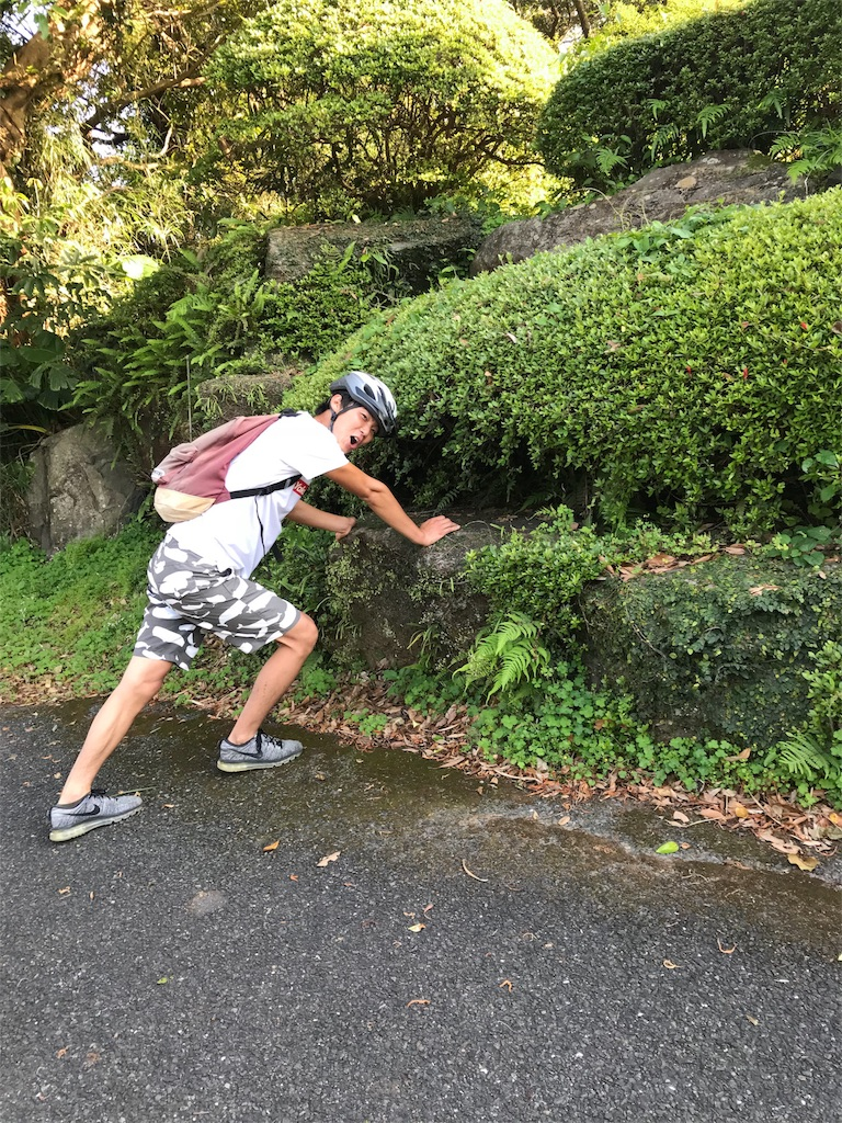 f:id:kosaku-tabi:20180516074948j:image
