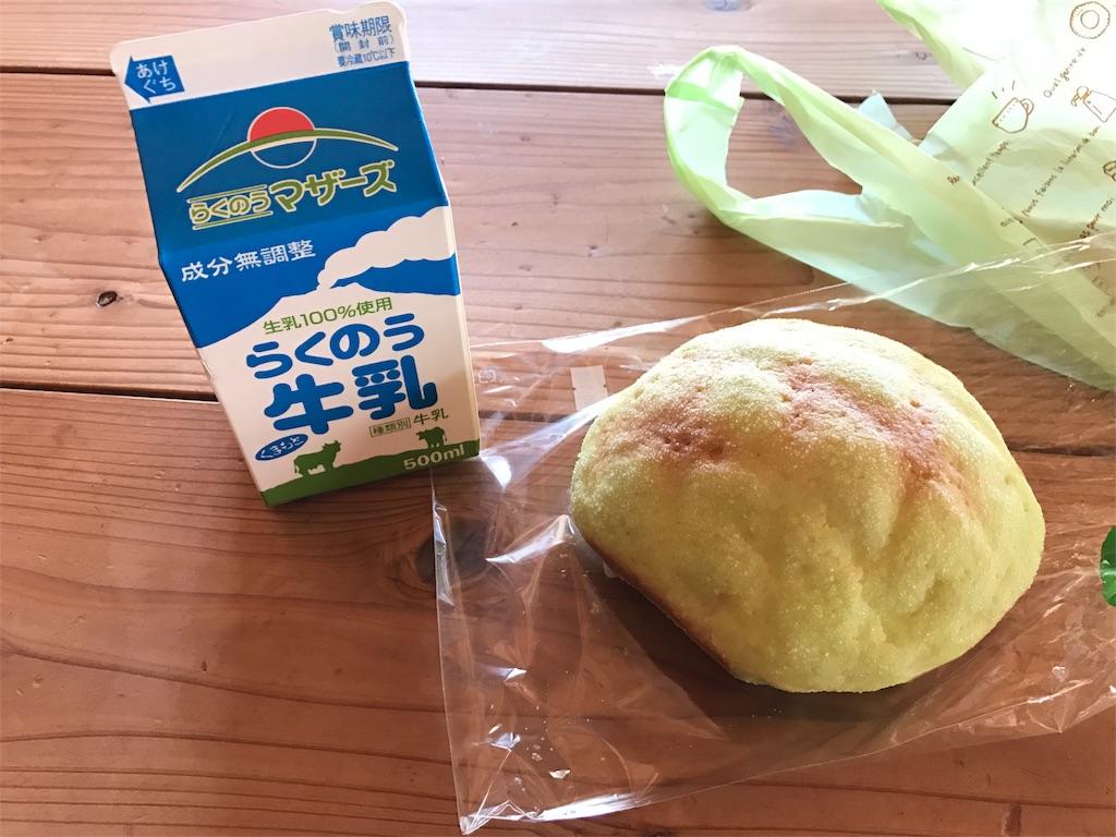 f:id:kosaku-tabi:20180528132742j:image