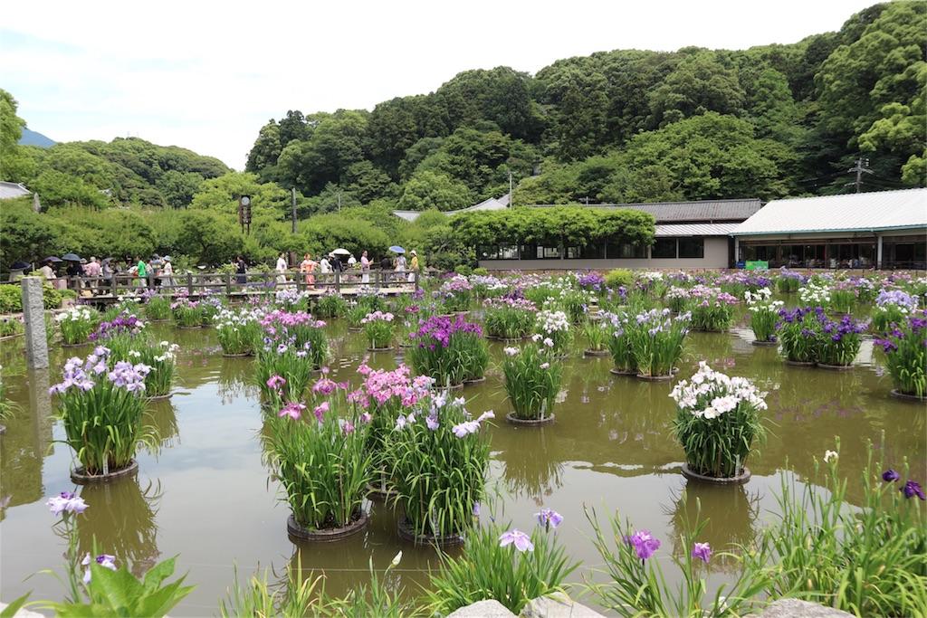 f:id:kosaku-tabi:20180610164327j:image