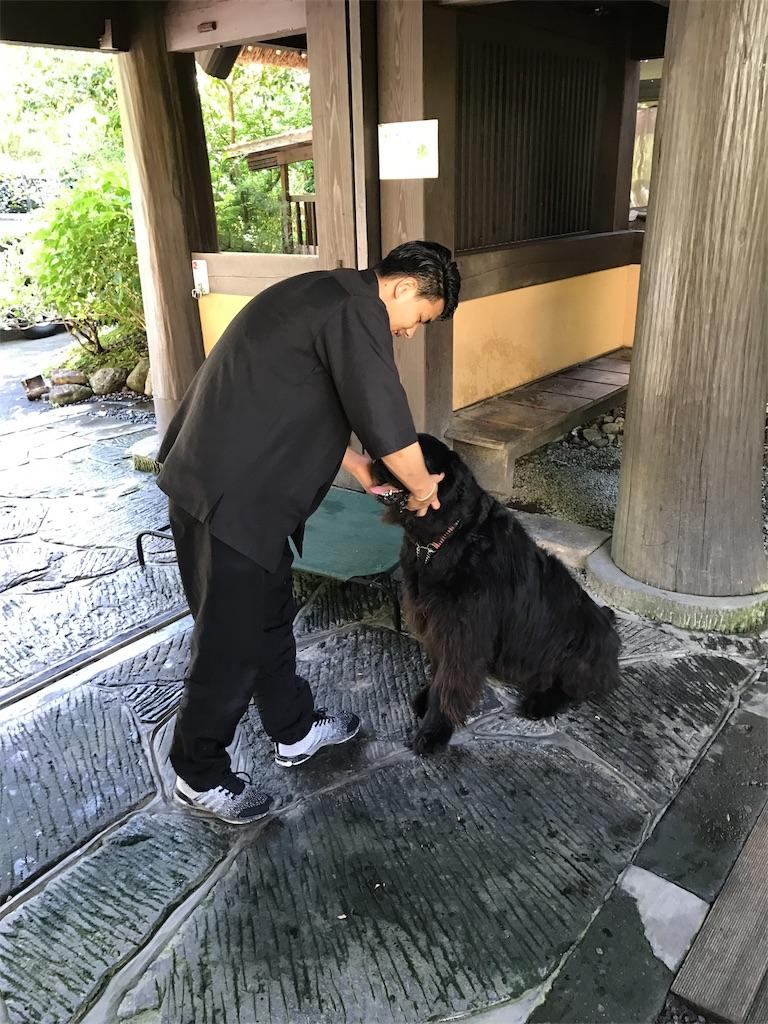 f:id:kosaku-tabi:20180616192443j:image