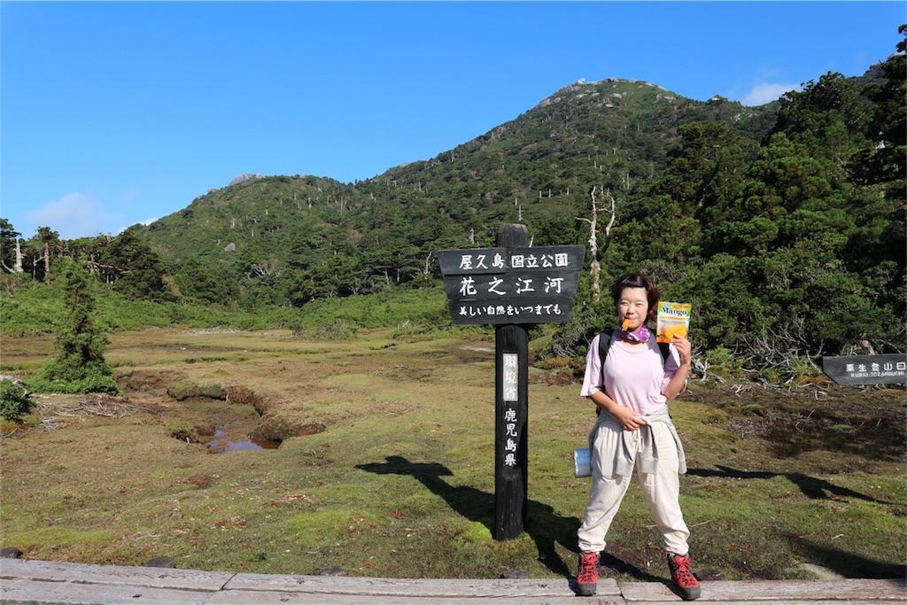 f:id:kosaku-tabi:20181015182149j:image
