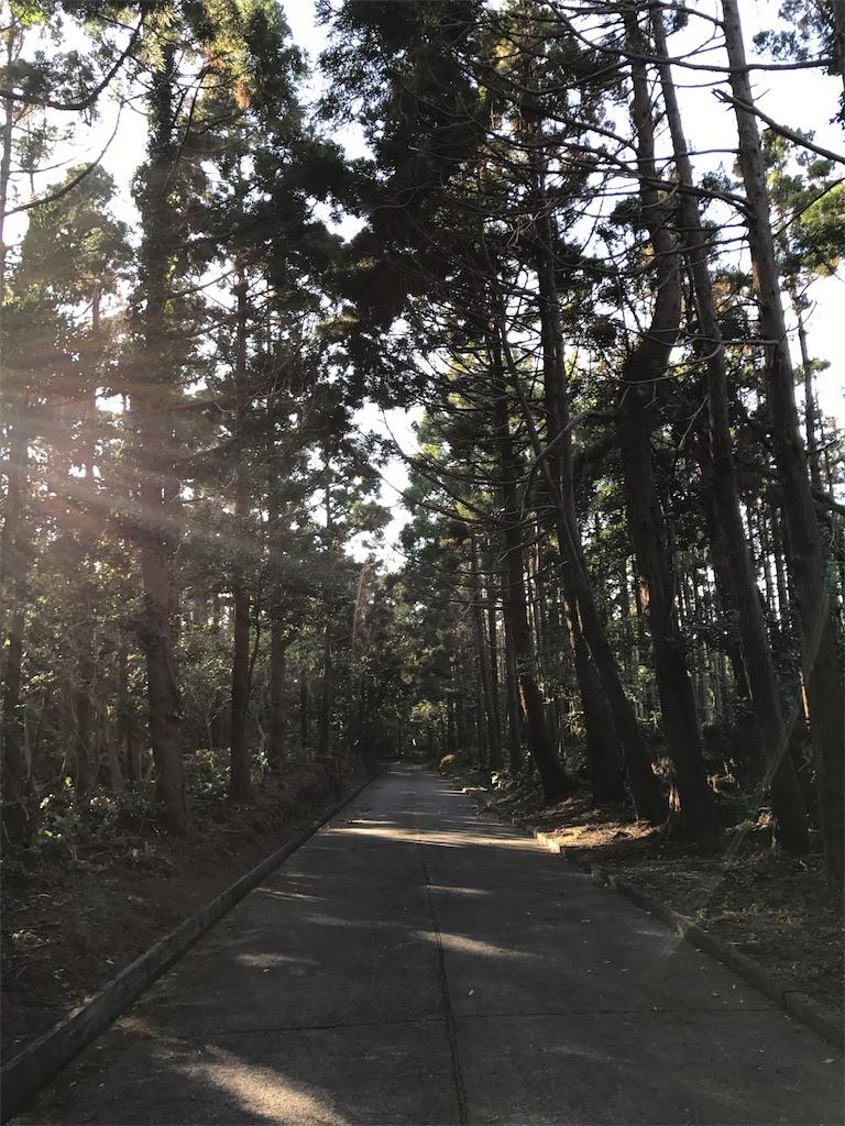 f:id:kosaku-tabi:20181031150751j:image
