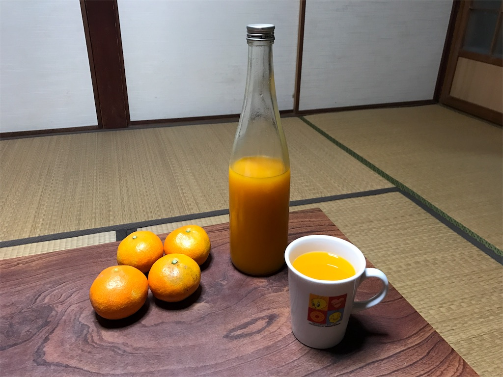 f:id:kosaku-tabi:20181115163728j:image