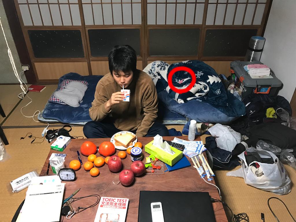 f:id:kosaku-tabi:20181222211614p:image