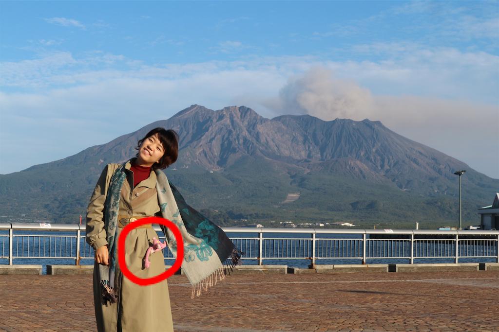 f:id:kosaku-tabi:20190114125236p:image