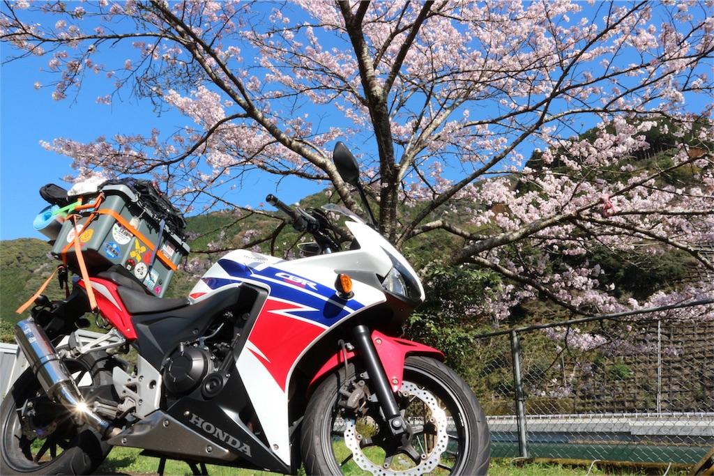 f:id:kosaku-tabi:20190407164104j:image