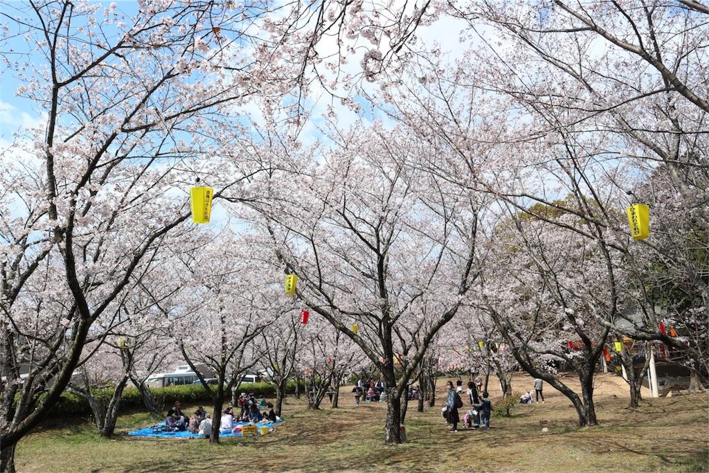 f:id:kosaku-tabi:20190413164424j:image