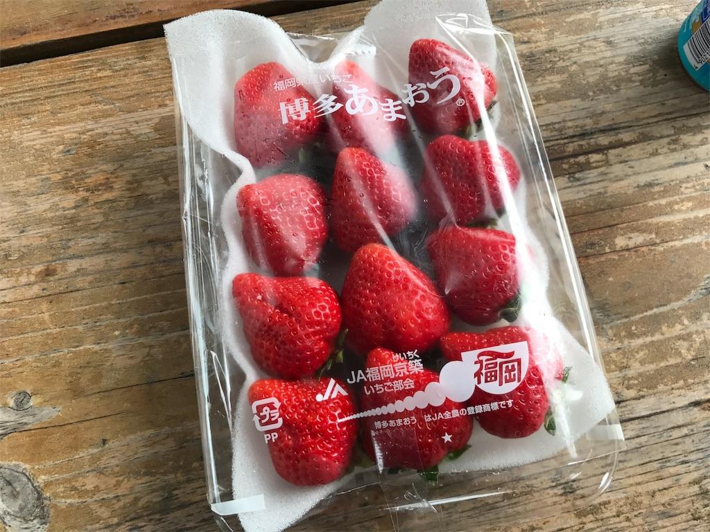 f:id:kosaku-tabi:20190425202051j:image