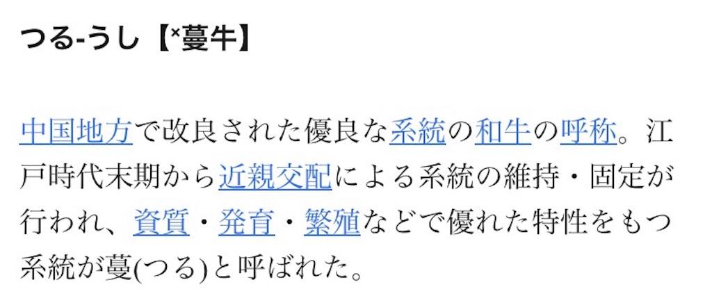 f:id:kosaku-tabi:20190513155755j:image