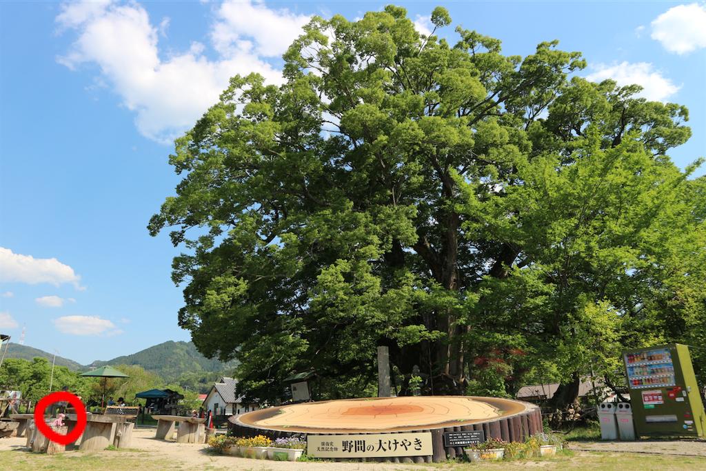 f:id:kosaku-tabi:20190516231010p:image