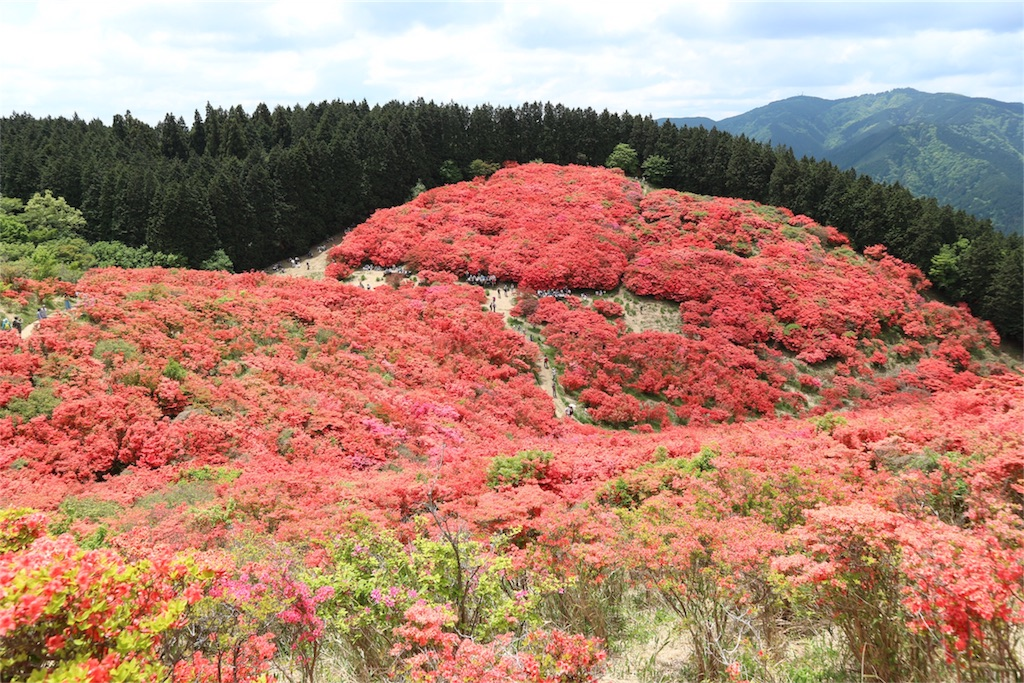 f:id:kosaku-tabi:20190519121418j:image