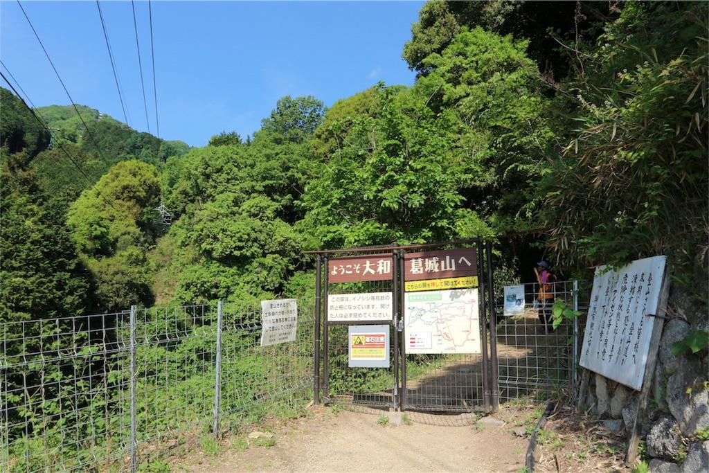 f:id:kosaku-tabi:20190519121456j:image
