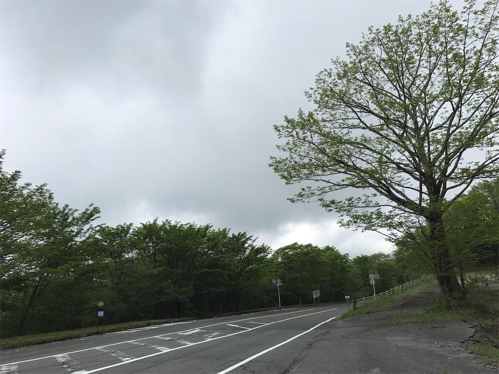 f:id:kosaku-tabi:20190603131749j:image