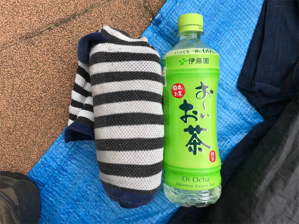 f:id:kosaku-tabi:20190610173149j:image