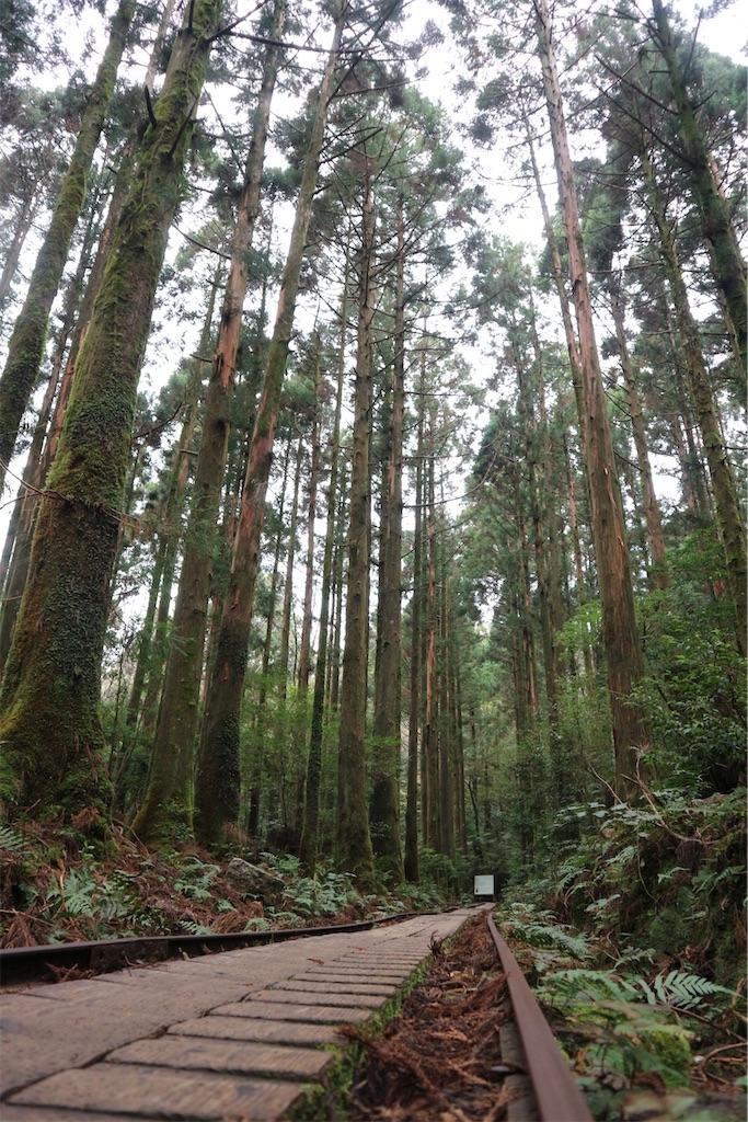 f:id:kosaku-tabi:20210211144044j:image