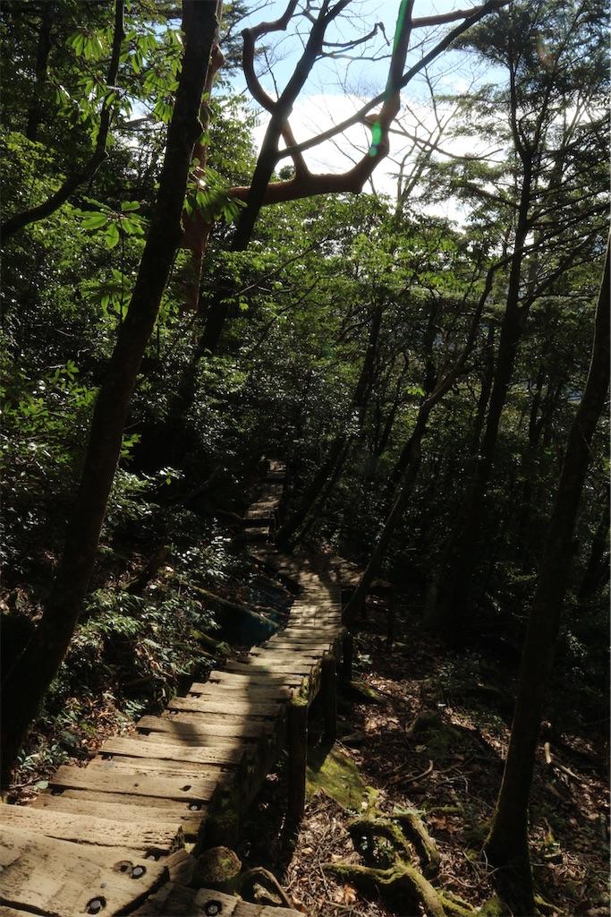 f:id:kosaku-tabi:20210211144244j:image