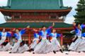 京都新聞写真コンテスト京都さくらよさこい晴れの舞い