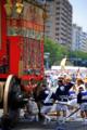 京都新聞写真コンテスト引き回し