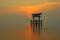 京都新聞写真コンテスト神秘の夜明け